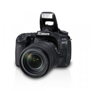 Canon EOS 80D Kit II (EF-S18-135 IS USM) With Enhanced Dual Pixel CMOS AF, 7.0fps Continuous Shooting