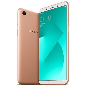 Buy Colors P45 (8 GB ROM, 1 GB RAM) - Gold online at best price in