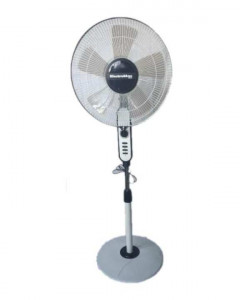 Electromax 825REG Stand Fan with Timer-5 Blades